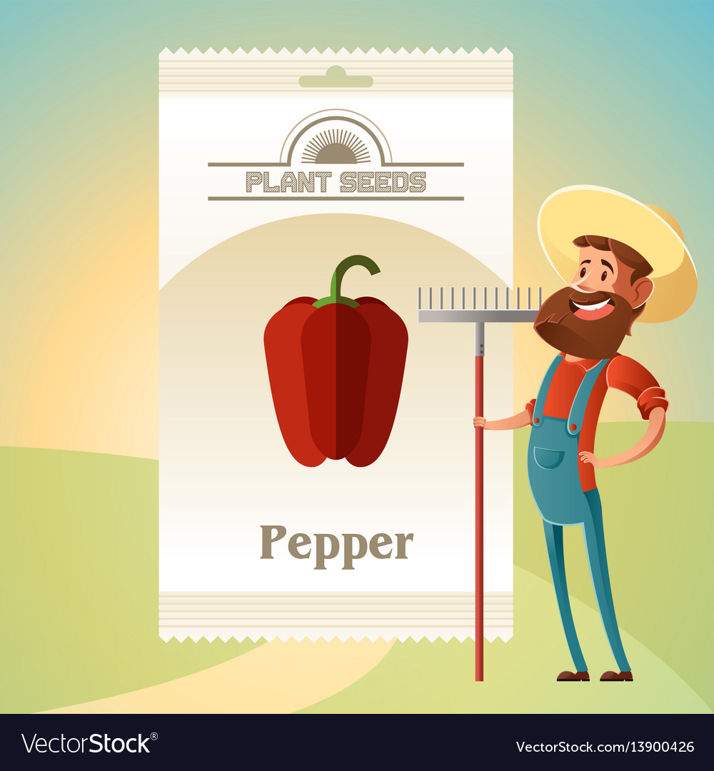 Pack of pepper seeds icon