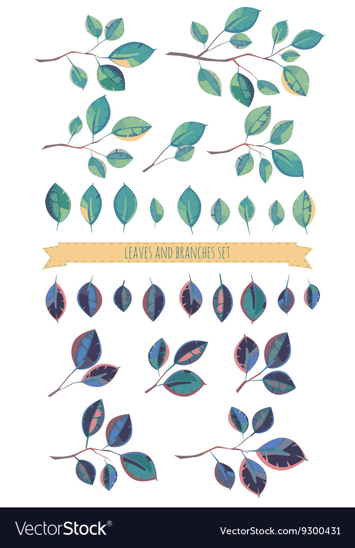 Leaves and branches set
