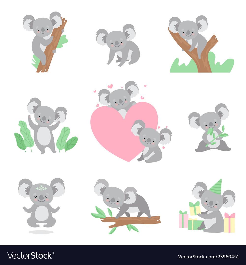 Collection of cute coala bear animals cartoon