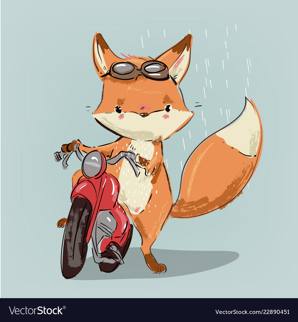 Cute fox on bike