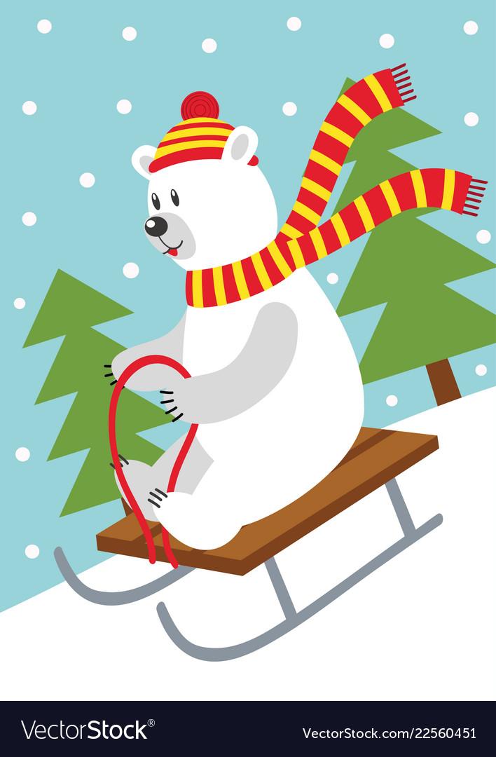 Polar bear on sled