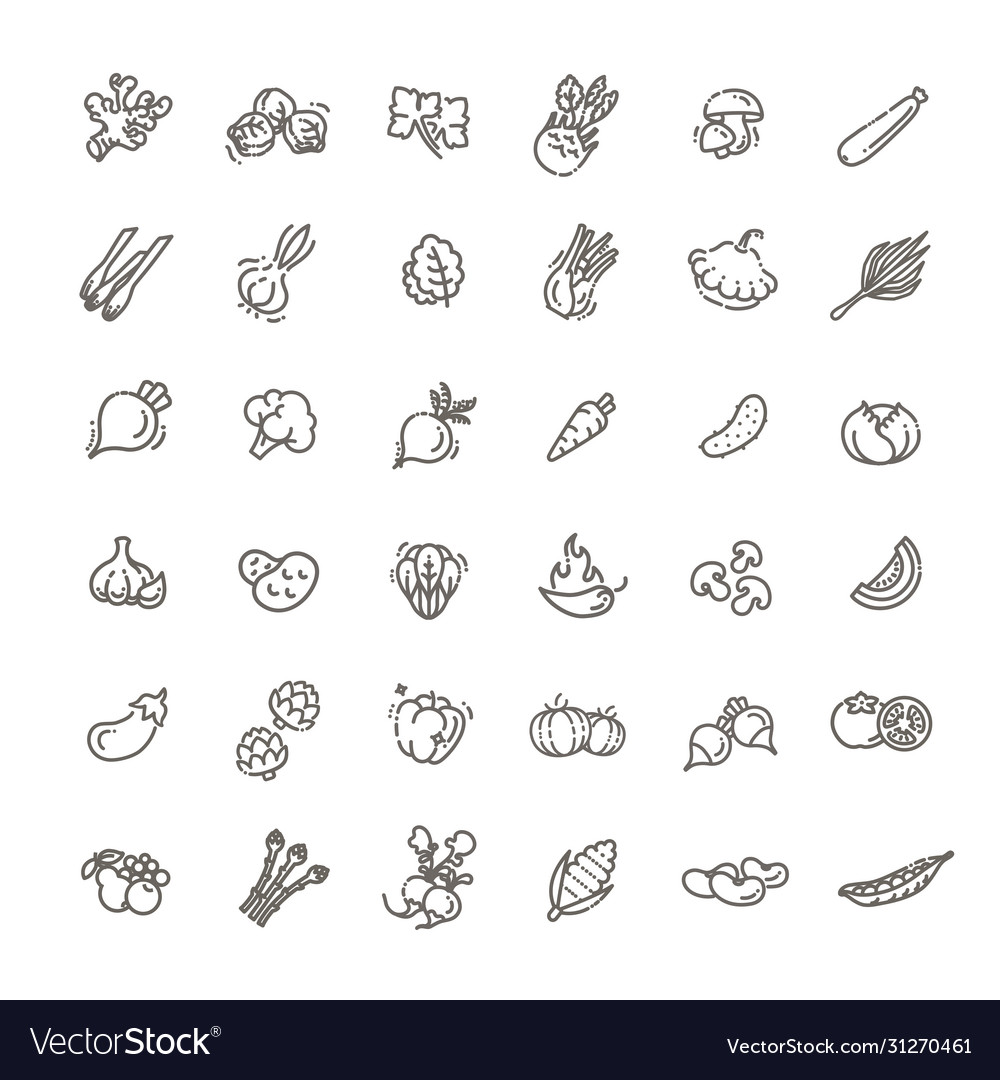 Basic vegetables thin line icon set vector