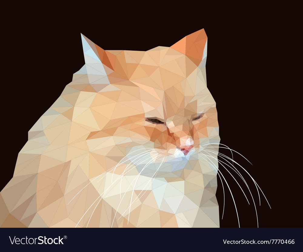 Polygonal of a red cat