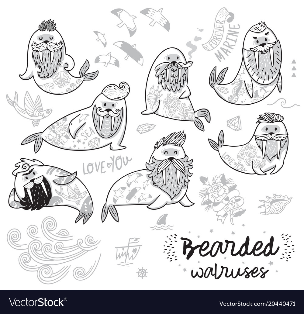 Black and white contour hipster walruses with