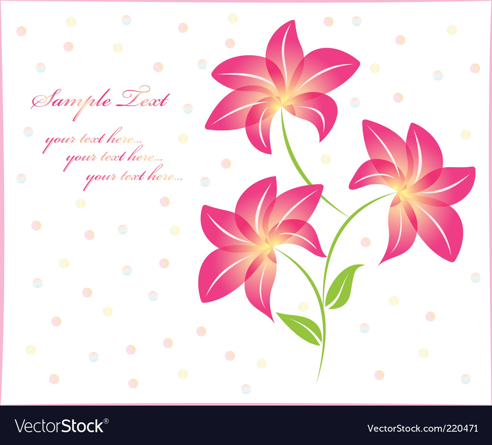 Flower background floral background isolated vector image