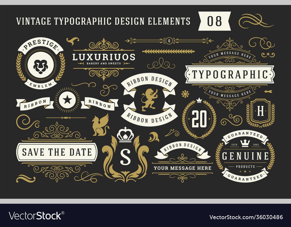 Vintage typographic decorative ornament design