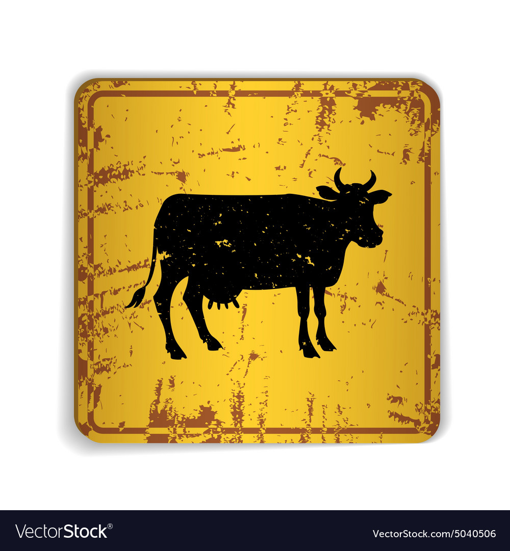 Old skratched yellow road sign with cow silhouette
