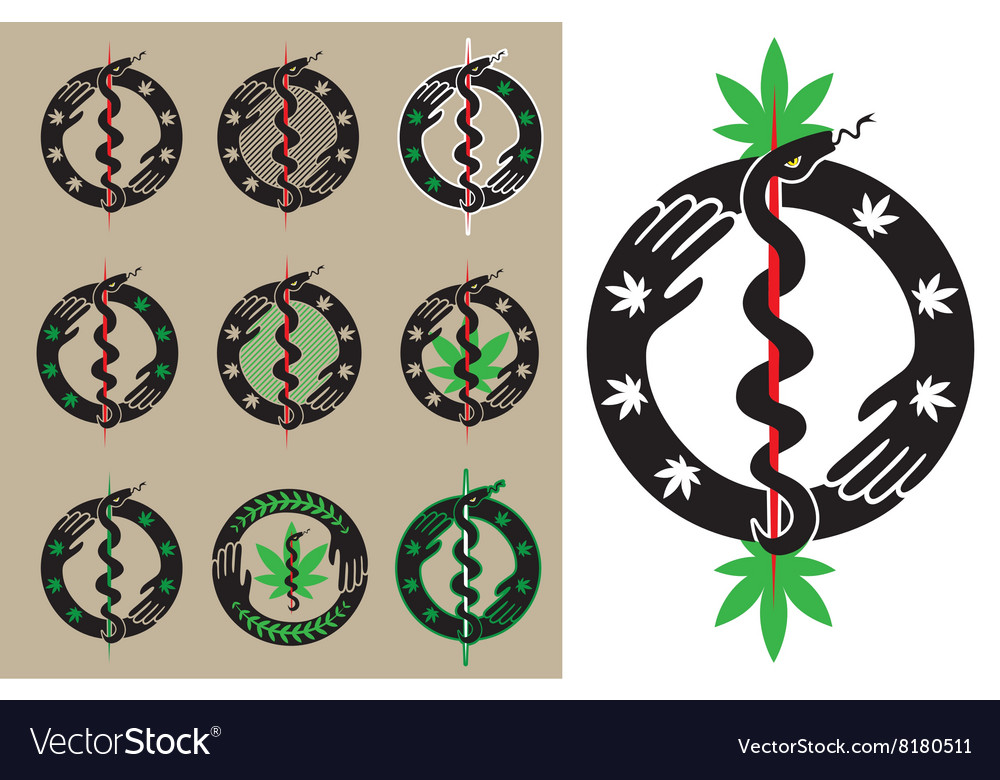 Medical Cannabis Leaf Snake Symbol Design Vector Image