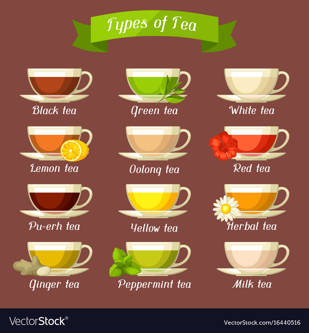 Types Of Tea Set Of Glass Cups With Different Vector Image