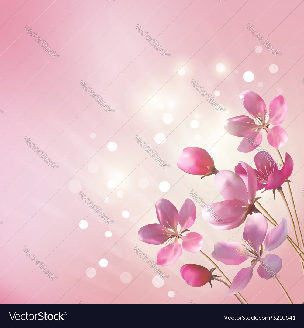 Shining Pink Flowers Background Royalty Free Vector Image