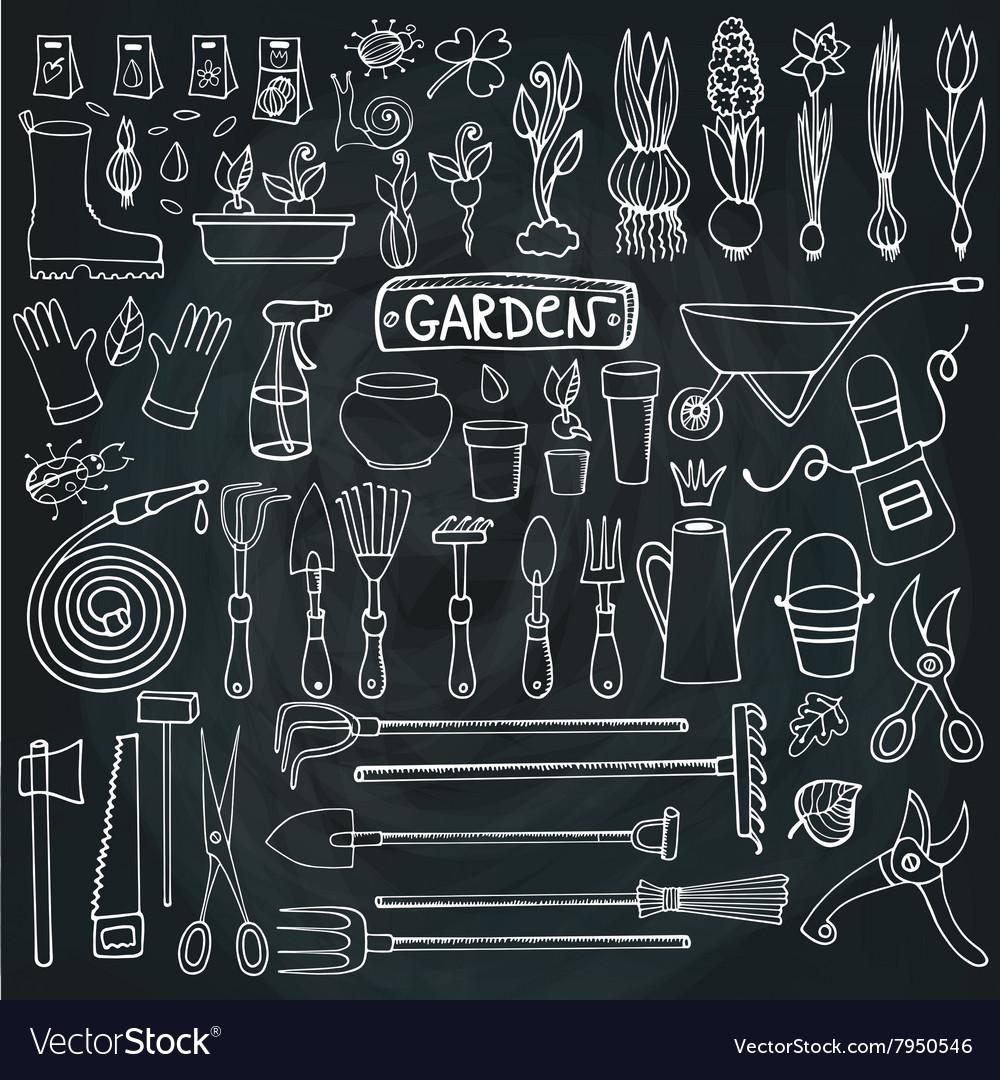 Spring Garden Doodle Settoolsplantschalkboard Vector Image Schematic