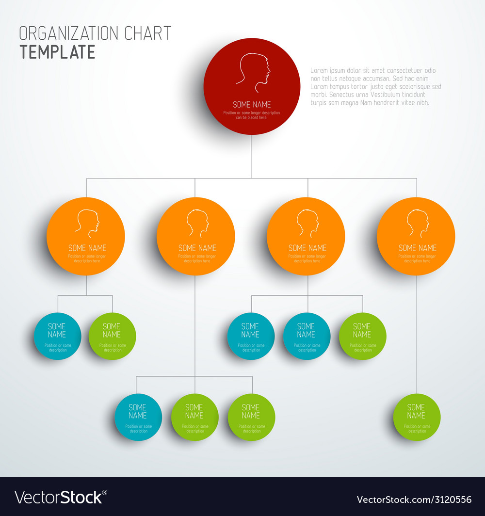 Modern and simple organization chart template