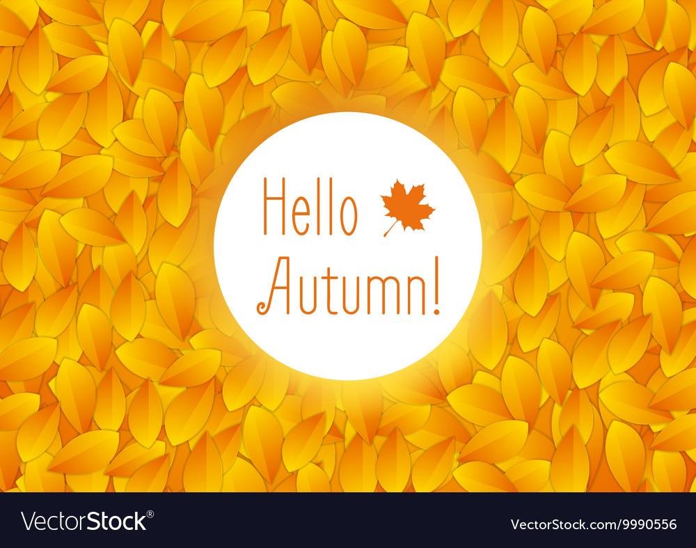Orange autumn leaves background vector image