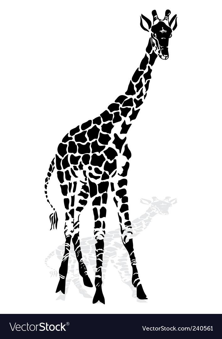 giraffe royalty free vector image vectorstock rh vectorstock com giraffe vector pattern giraffe vector art