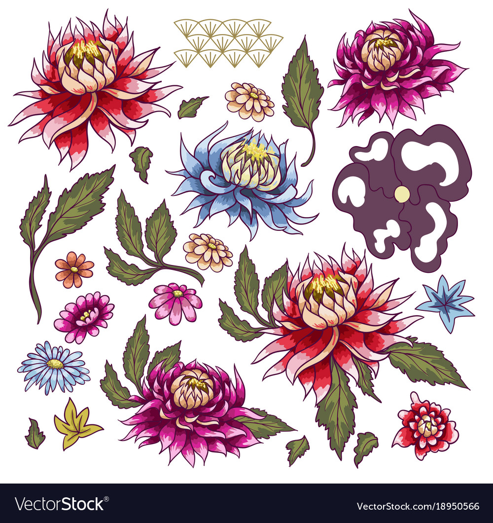 Set of painted flowers asters japanese style