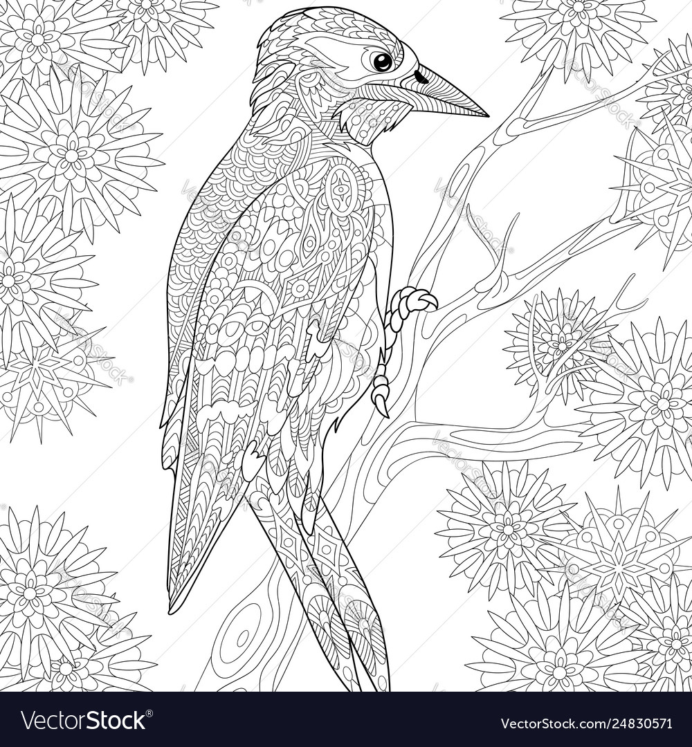 Woodpecker adult coloring page
