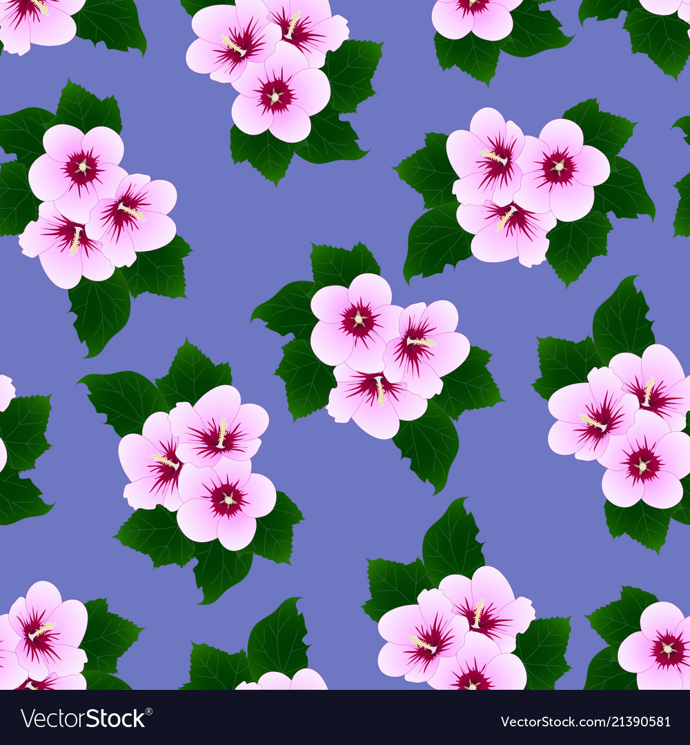 Hibiscus Syriacus Rose Of Sharon On Purple Vector Image