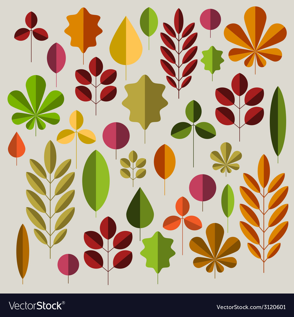 Autumn minimalist abstract floral background vector image
