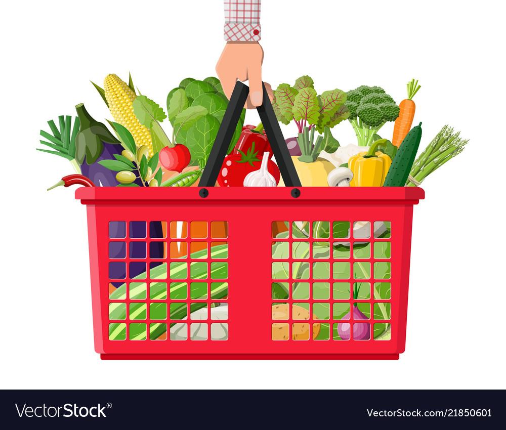 Plastic shopping basket full of vegetables in hand