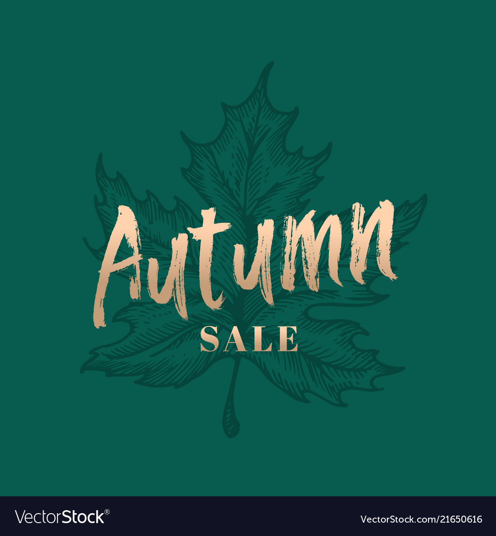 Autumn sale abstract retro label sign or