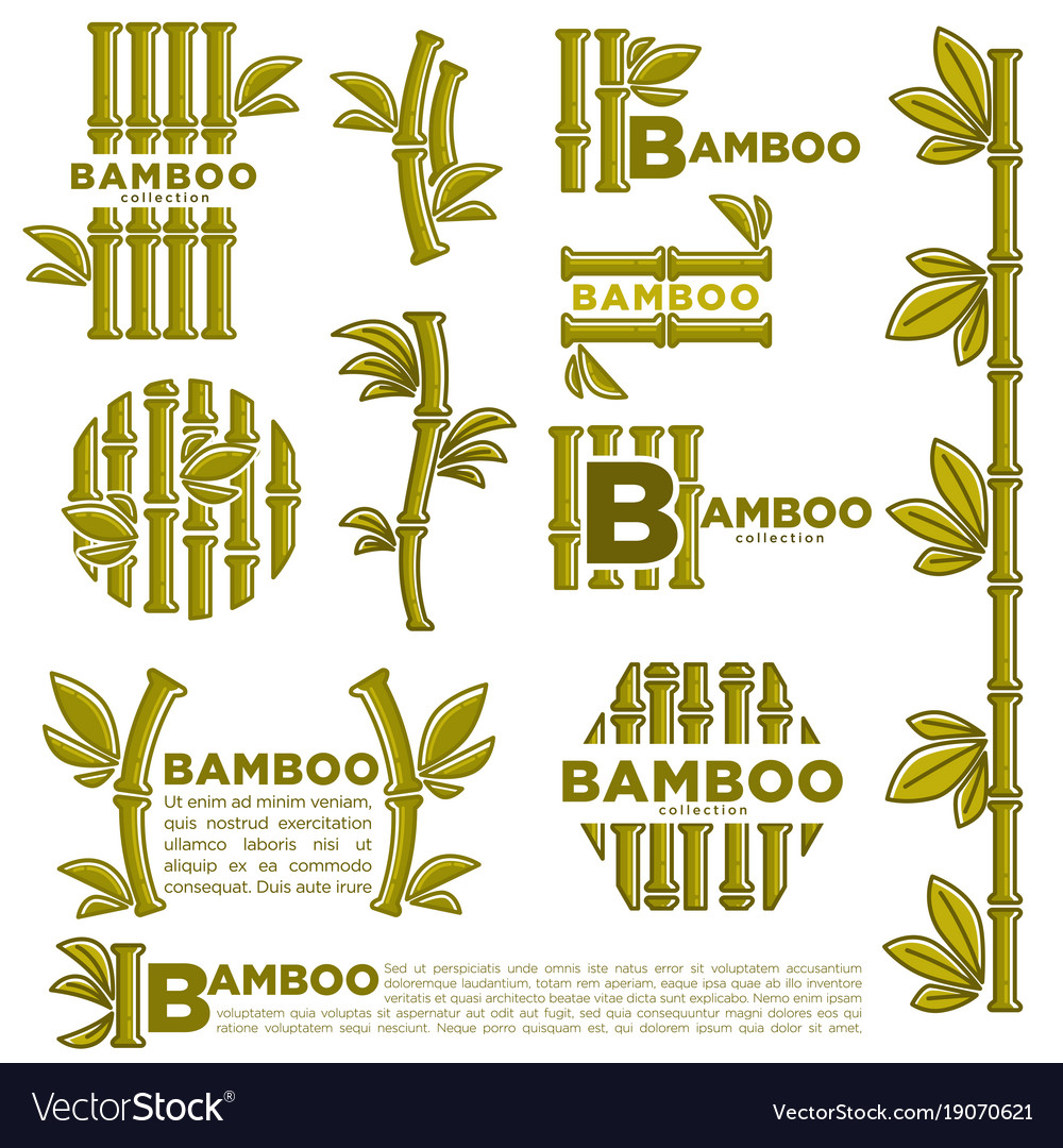 Bamboo branch leaf icons template