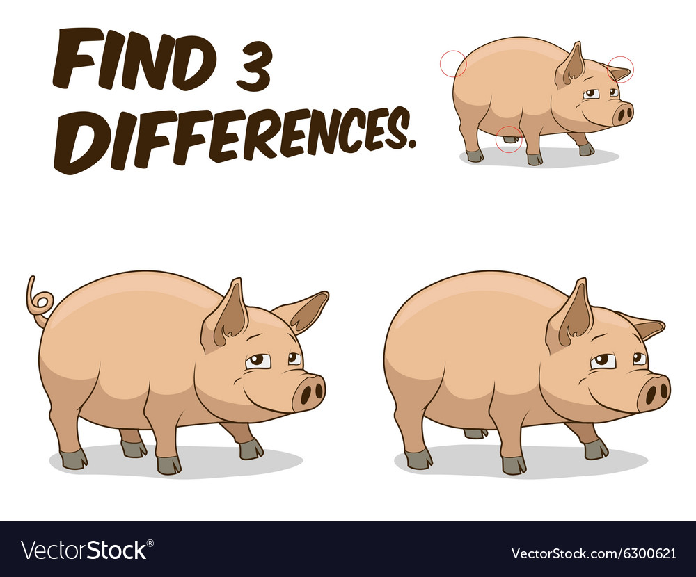 Find differences game pig