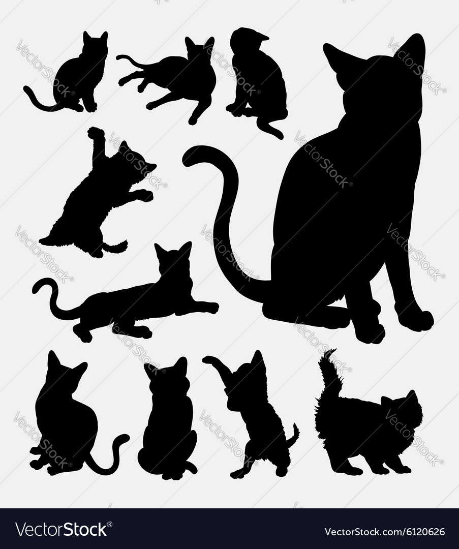 Cat action silhouettes