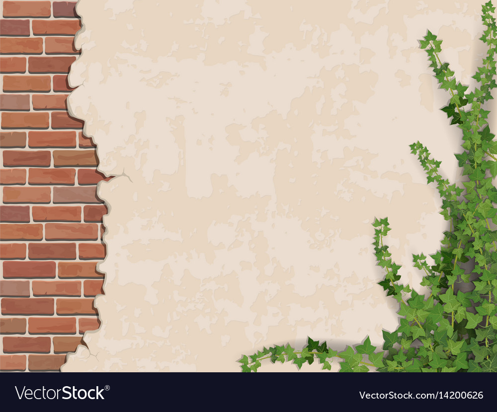Concrete wall ivy and brick vector image