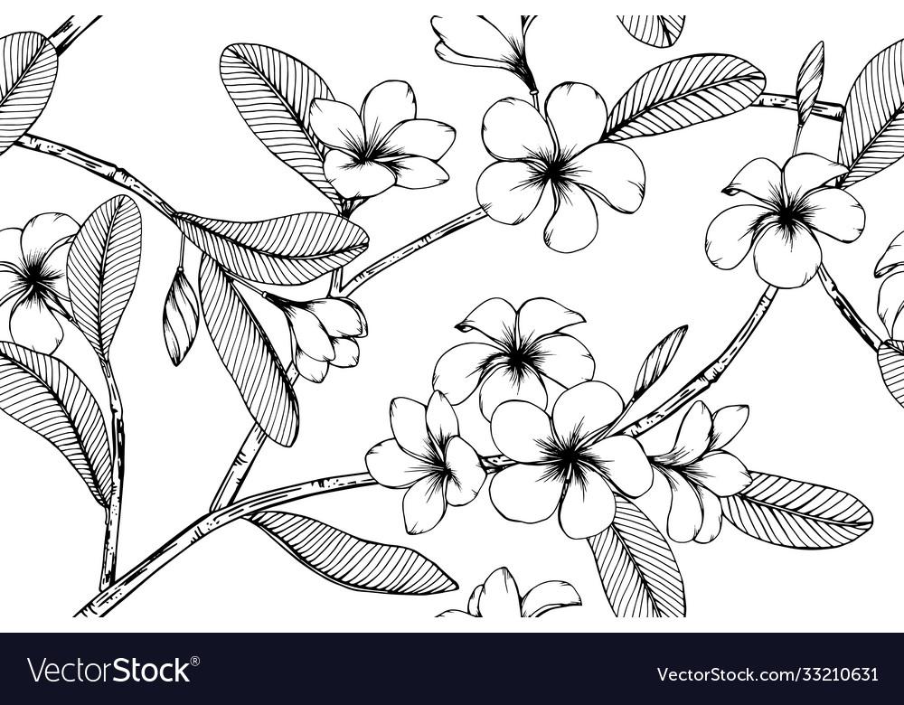 Hawaiian flower tropical leaves pattern seamless