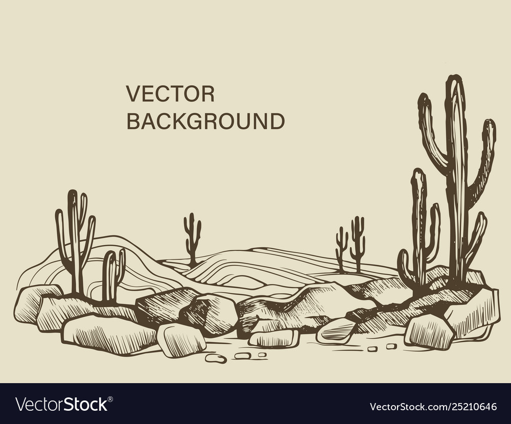 Cacti in arizona desert sketch