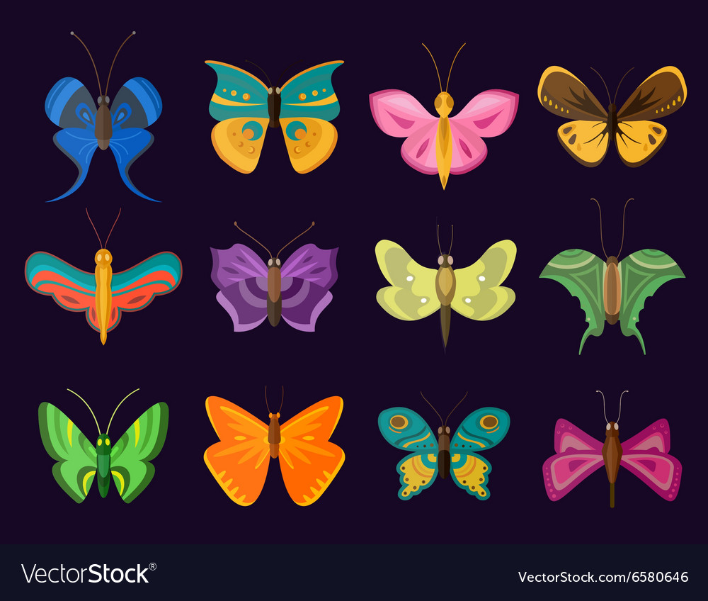 Colorful butterflies flat style collection