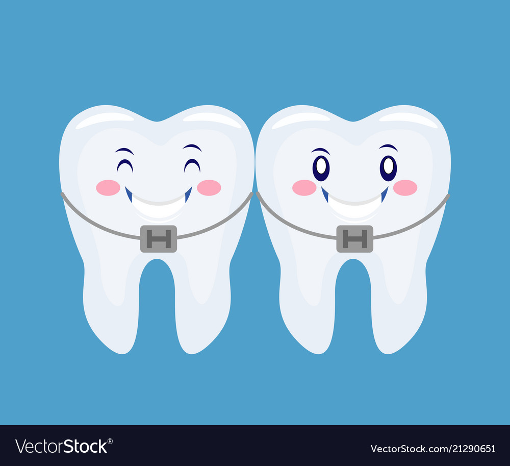 Two Funny Cartoon Thooths With Braces System Vector Image