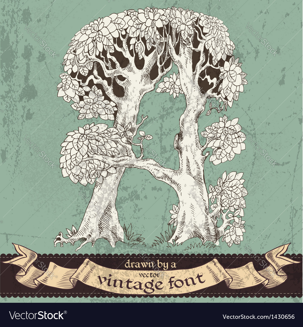 Magic grunge forest hand drawn by vintage font - A