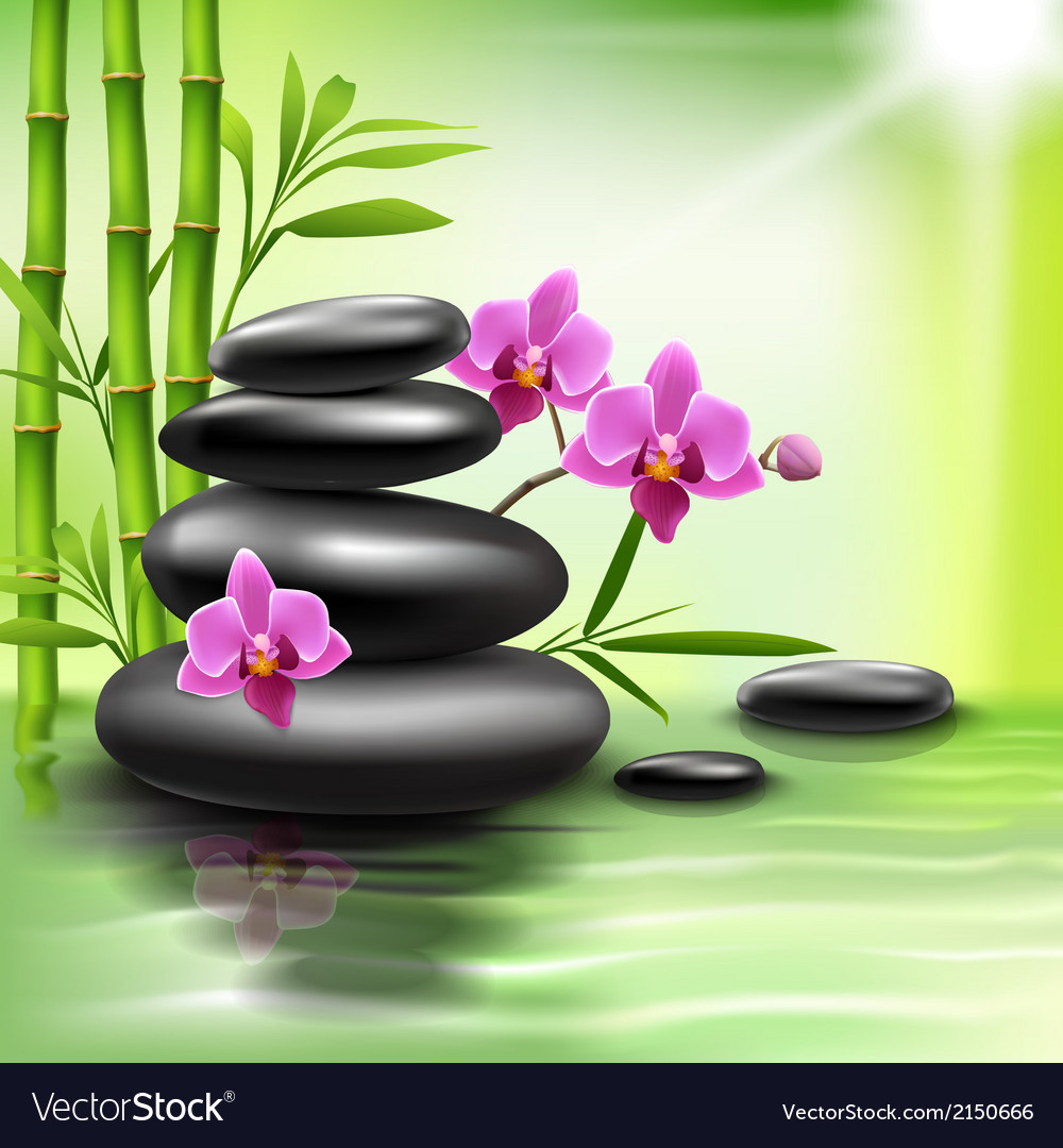 realistic spa background royalty free vector image