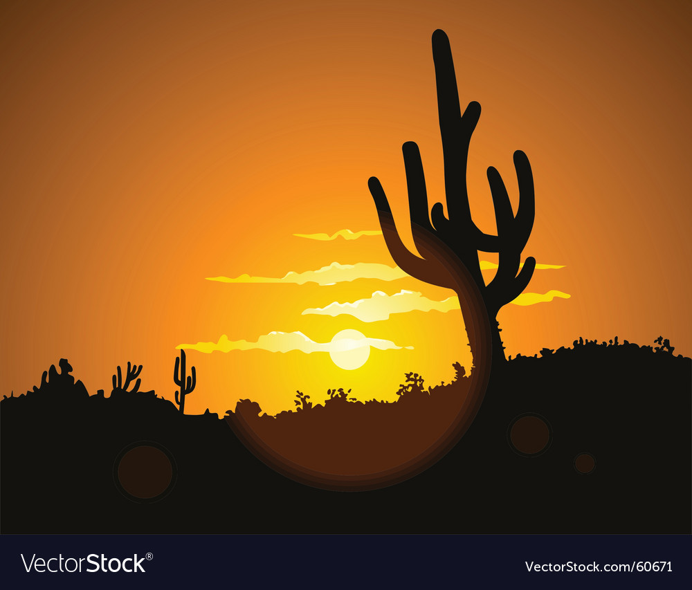 Cactus sunset vector image