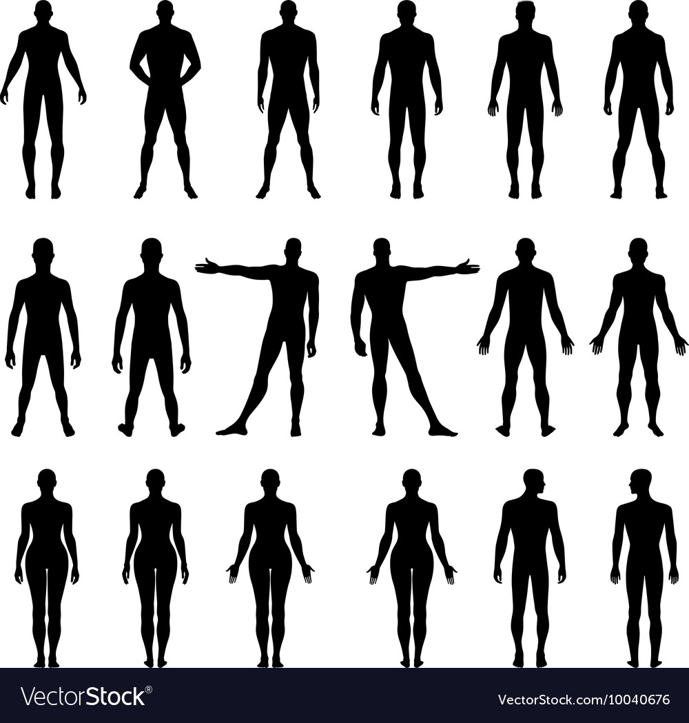 Full Length Front Back Human Silhouette Royalty Free Vector Free for commercial use no attribution required high quality images. vectorstock