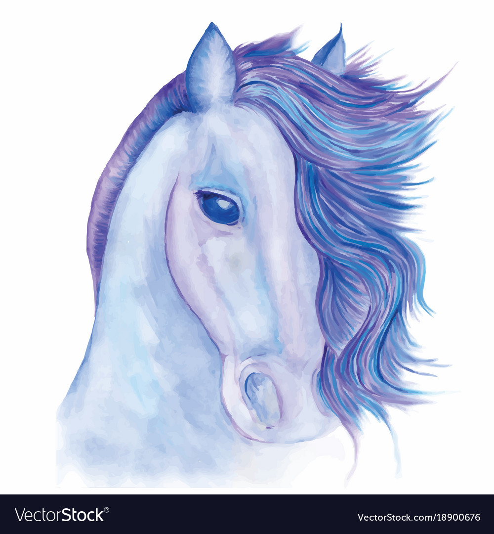 Horse drawn watercolor vector image