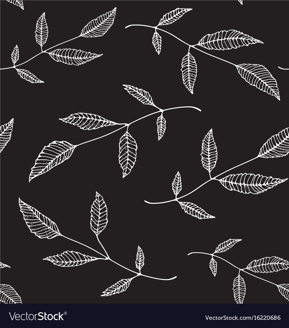 Black an white floral seamless pattern background vector image
