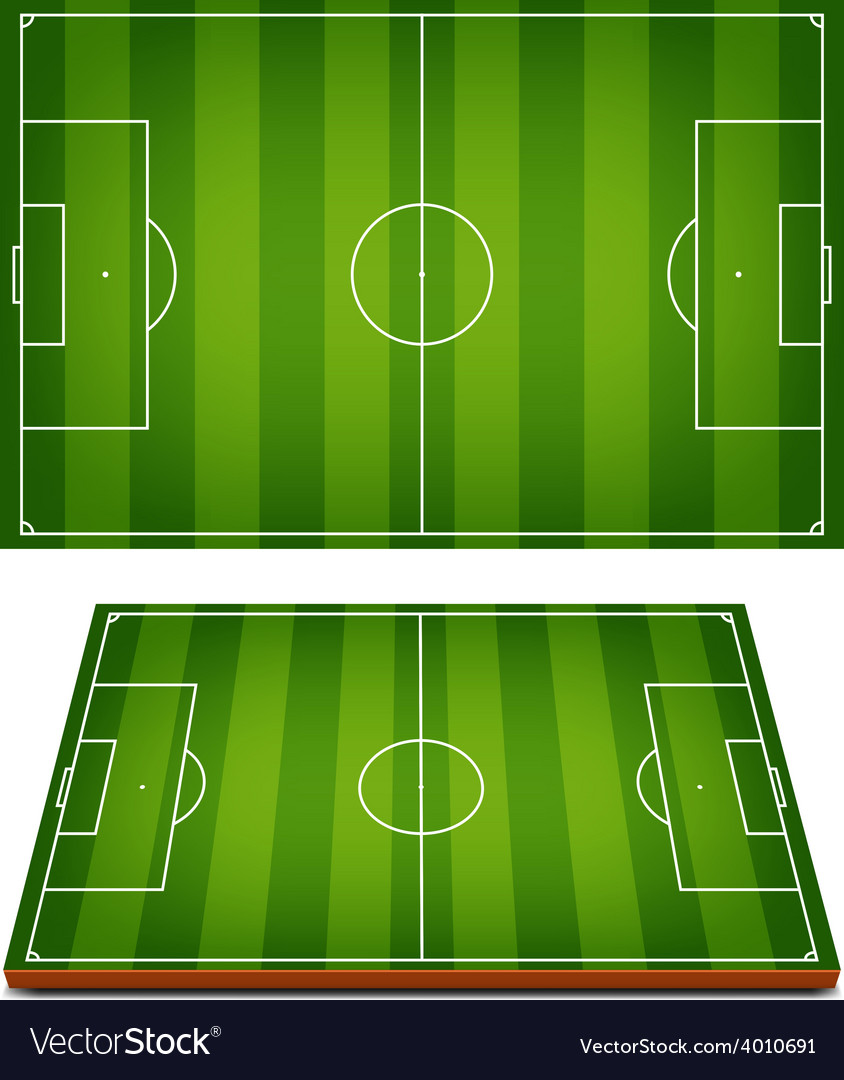 Soccer Fields Striped Grass vector image