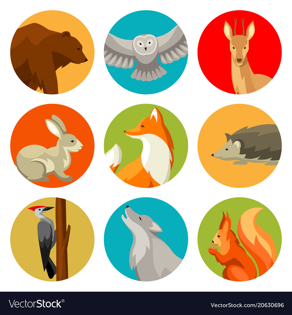 Set of woodland forest animals and birds stylized