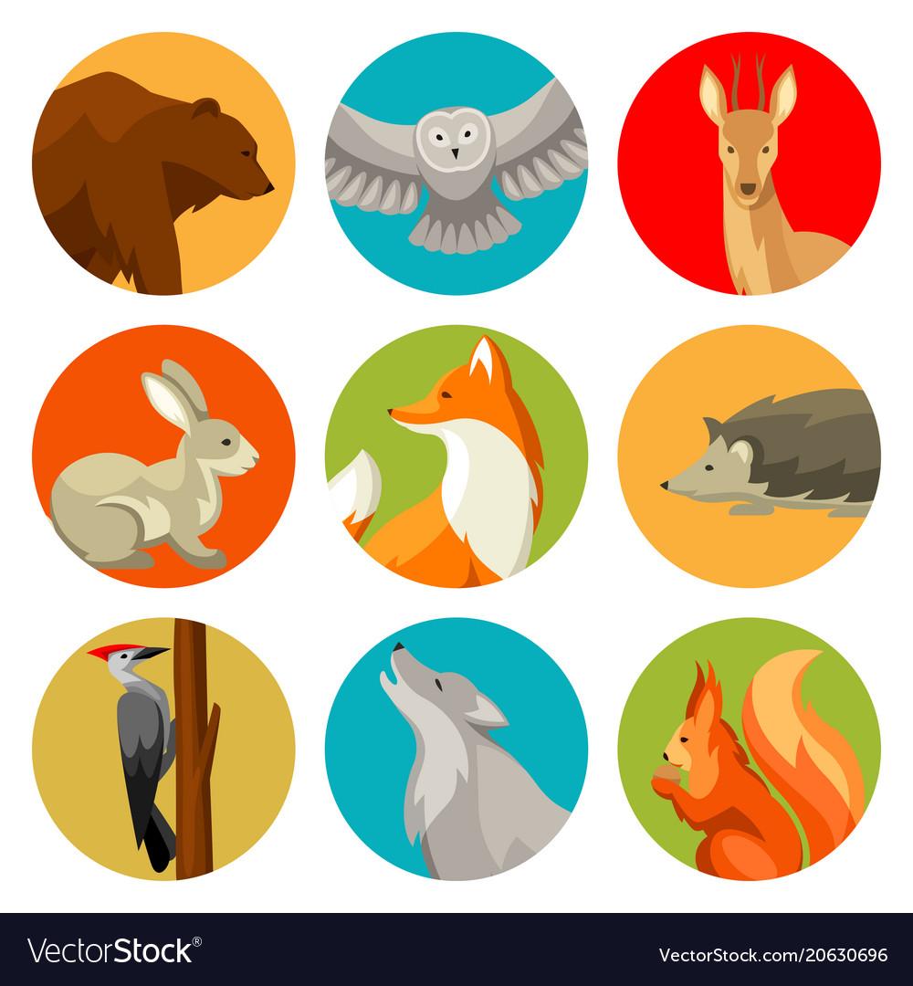 Set woodland forest animals and birds stylized