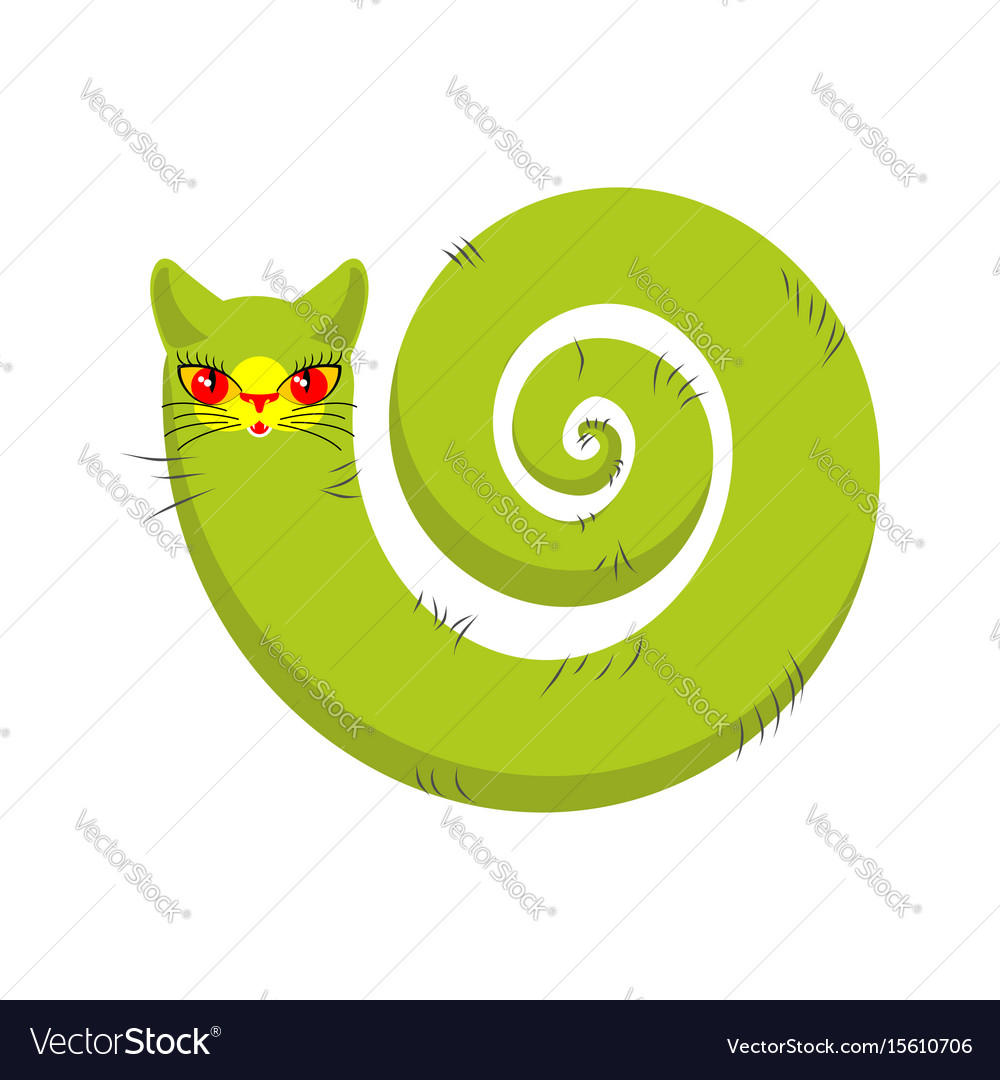 Cat fabulous isolated long tail of pet on white vector image