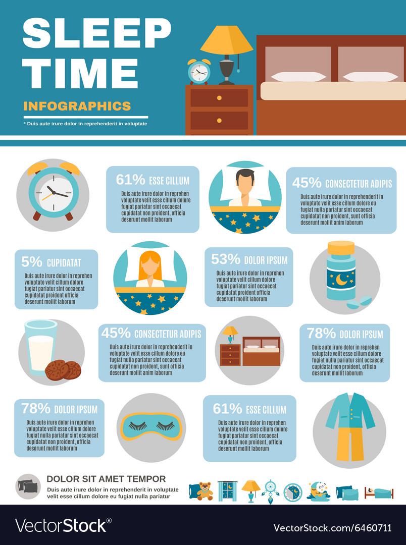 Infographic Sleep Time vector image