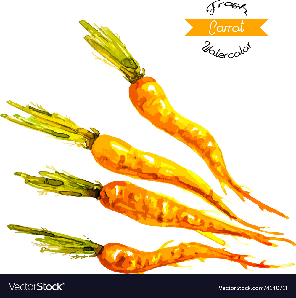 Watercolor Easter carrots background