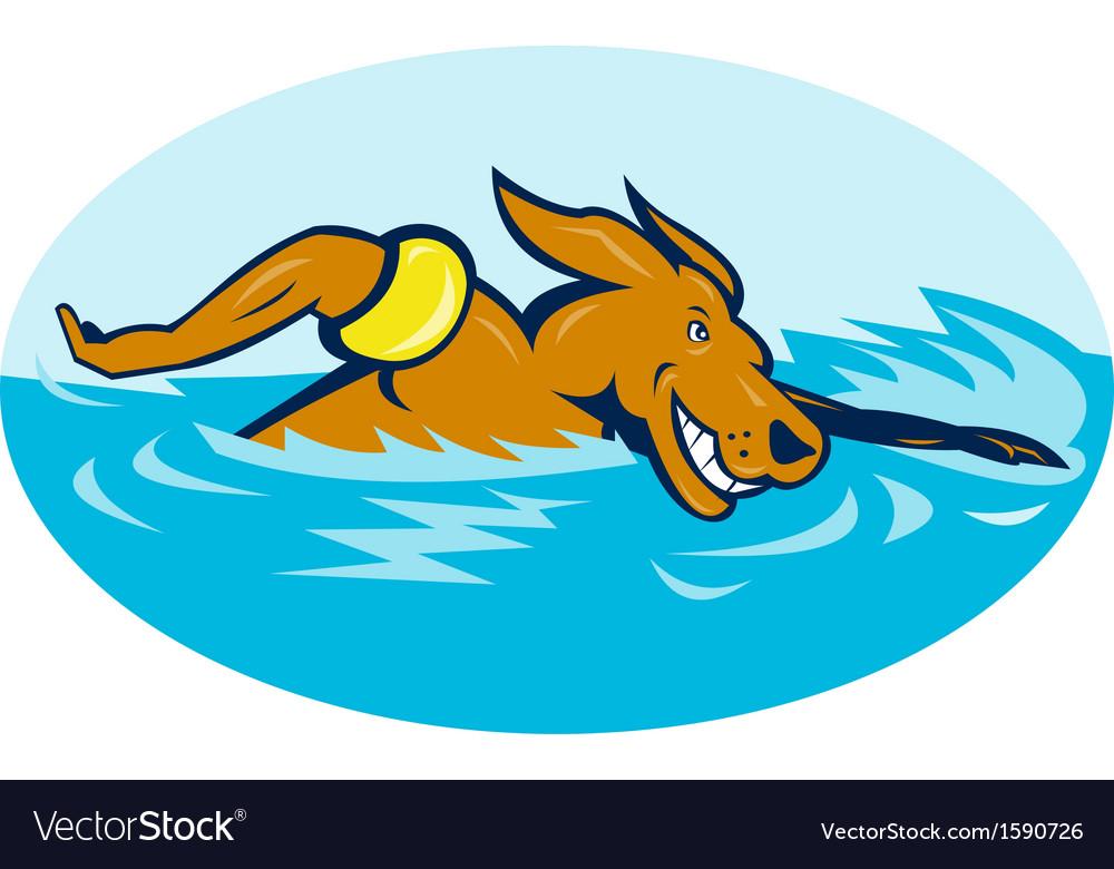 Cartoon dog swimming vector image