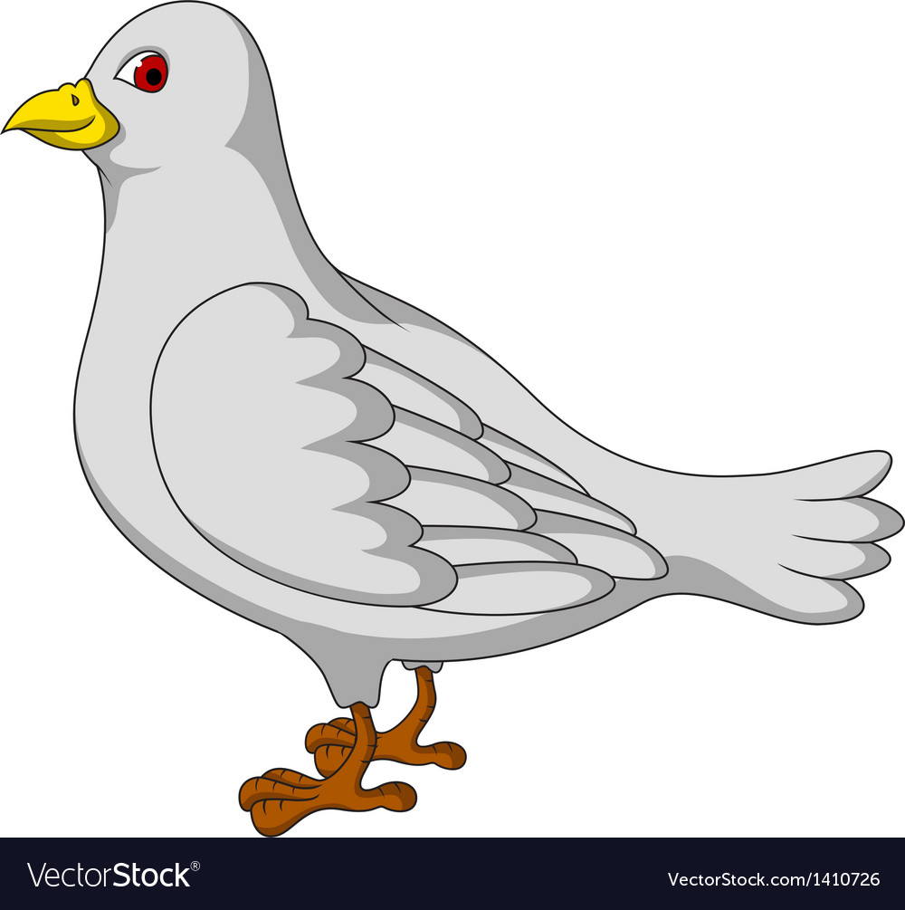 White dove cartoon