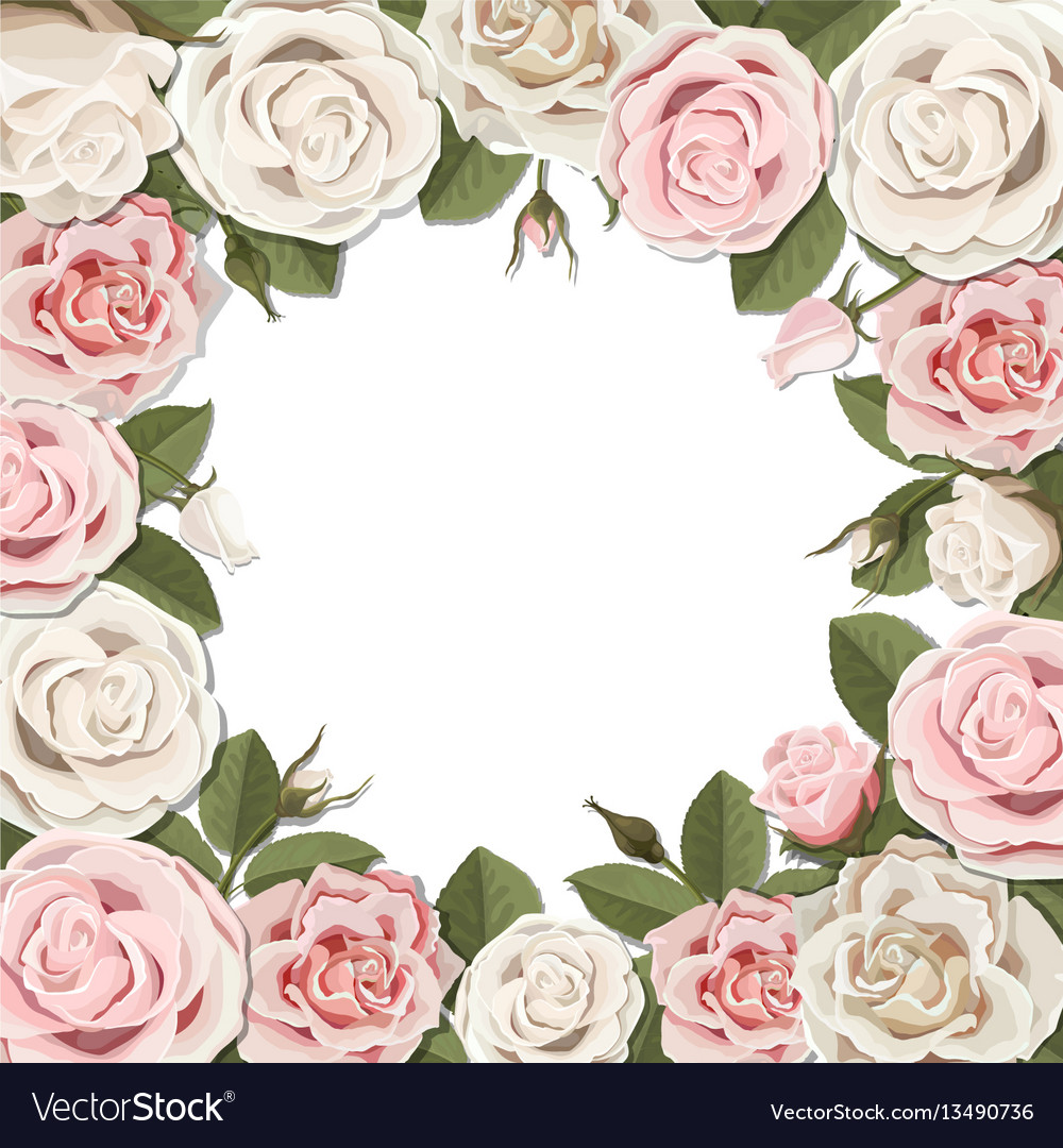 Blossom pink and white rose flowers frame vector image mightylinksfo