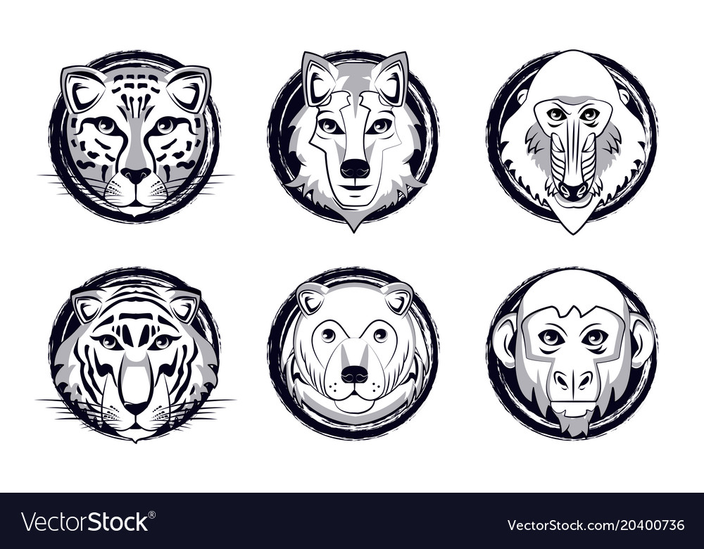 Wild Animals Heads Cartoon Royalty Free Vector Image
