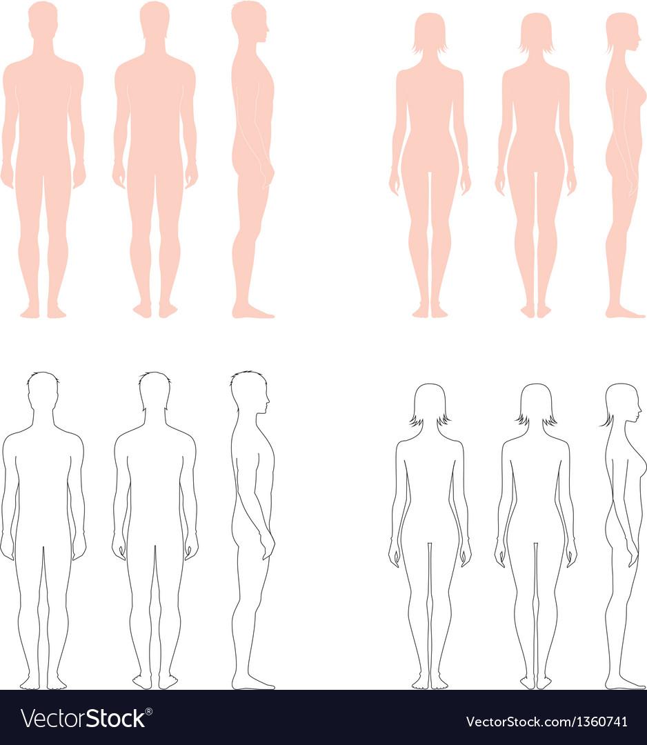 Human figure collection