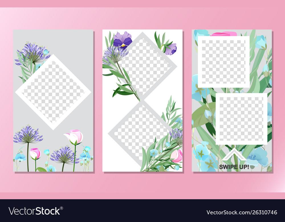 Floral social media stories background